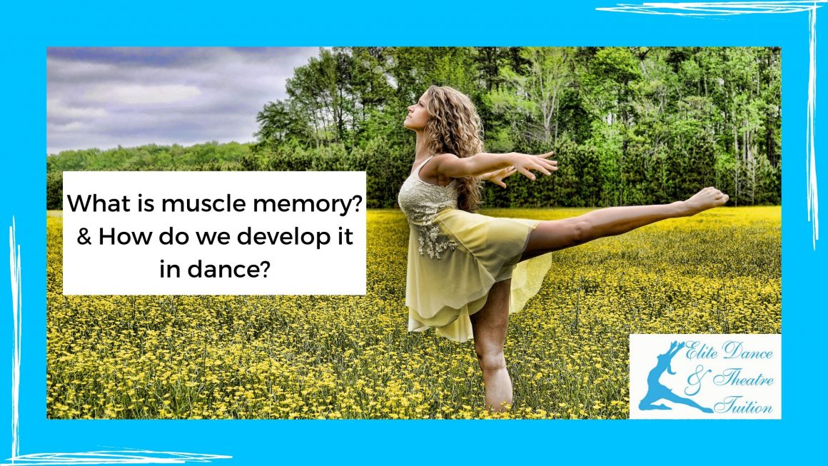 Muscle Memory Within Dance!